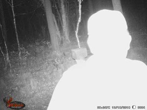 washed out trail camera picture